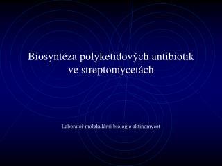 Biosyntéza  polyketidov ých antibiotik ve  streptomycet ách