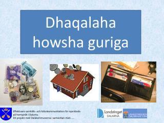 Effektivare samh�lls- och h�lsokommunikation f�r nyanl�nda p� hemspr�k i Dalarna.