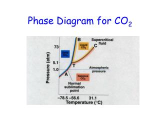 Phase Diagram for CO 2