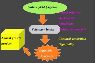 Chemical compsition Digestibility