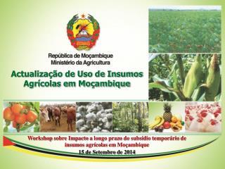 Actualização de Uso de Insumos Agrícolas em Moçambique