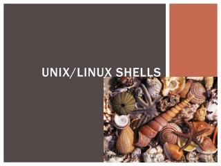 Unix/Linux shells