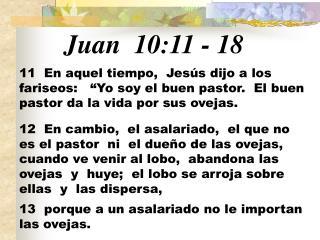 Juan 10:11  -  18
