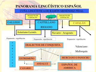 PANORAMA LING  STICO ESPA OL