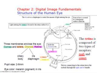 Chapter 2: Digital Image Fundamentals