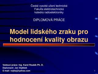 Model lidského zraku pro hodnocení kvality obrazu