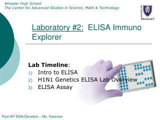 Laboratory #2:   ELISA Immuno Explorer