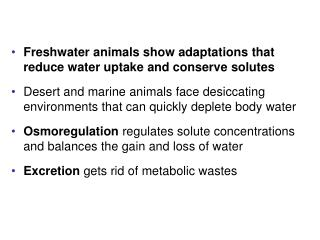 Freshwater animals show adaptations that reduce water uptake and conserve solutes