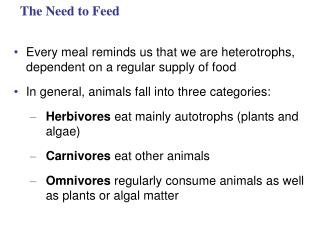 The Need to Feed