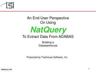 An End-User Perspective On Using NatQuery To Extract Data From ADABAS Building a Datawarehouse