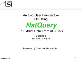 An End-User Perspective On Using NatQuery To Extract Data From ADABAS Building a Dynamic Variable