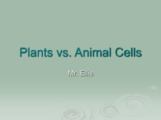 Plants vs. Animal Cells