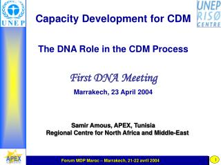 Capacity Development for CDM The DNA Role in the CDM Process First DNA Meeting