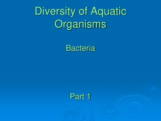 Diversity of Aquatic Organisms Bacteria Part 1