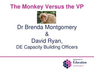 The Monkey Versus the VP Dr Brenda Montgomery  & David Ryan,  DE Capacity Building Officers