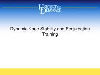 Dynamic Knee Stability and Perturbation Training