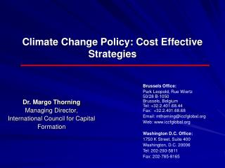 Climate Change Policy: Cost Effective Strategies