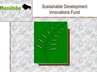 Sustainable Development  Innovations Fund