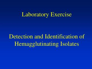 Laboratory Exercise Detection and Identification of Hemagglutinating Isolates