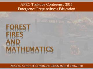 Forest  Fires  and  Mathematics