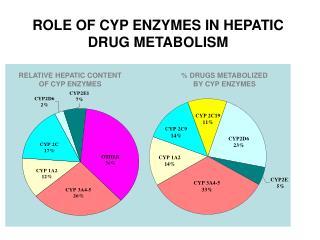 ROLE OF CYP ENZYMES IN HEPATIC DRUG METABOLISM