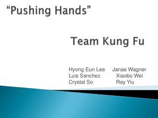 Team Kung Fu