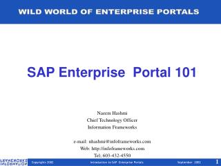 SAP Enterprise  Portal 101