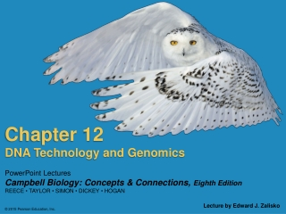 Chapter 8: Fingerprints, diversity analysis,     specific markers