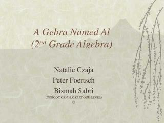 A Gebra Named Al (2 nd  Grade Algebra)
