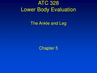 ATC 328  Lower Body Evaluation