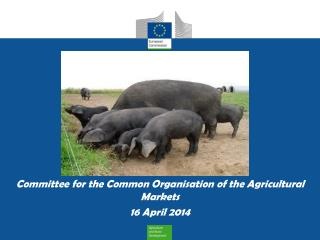 Committee for the Common Organisation of the Agricultural Markets 16 April 2014