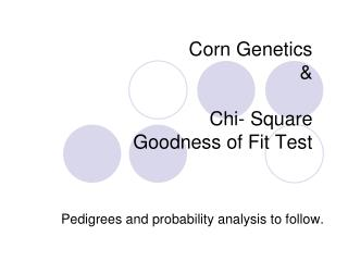 Corn Genetics  & Chi- Square  Goodness of Fit Test