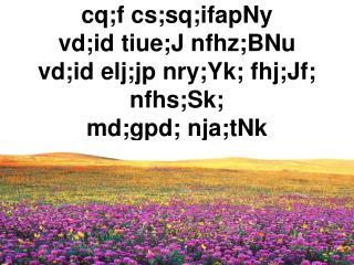 cq;f cs;sq;ifapNy vd;id tiue;J nfhz;BNu vd;id elj;jp nry;Yk; fhj;Jf; nfhs;Sk; md;gpd; nja;tNk