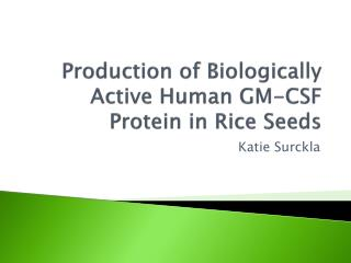 Production of Biologically Active Human GM-CSF Protein in Rice Seeds