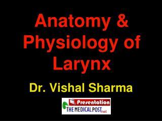 Anatomy  Physiology of Larynx