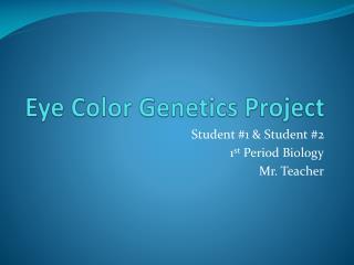 Eye Color Genetics Project