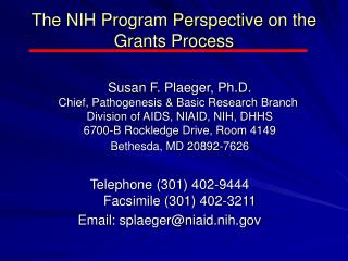 The NIH Program Perspective on the Grants Process