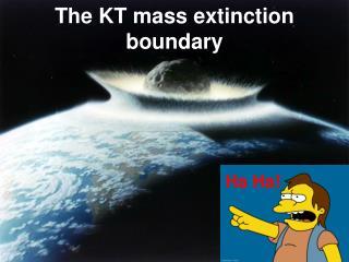 The KT mass extinction boundary