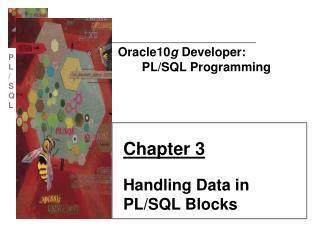 Oracle10 g  Developer:        PL/SQL Programming