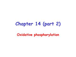 Chapter 14 (part 2)