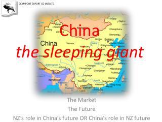 China  the sleeping giant