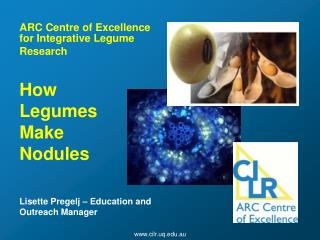 ARC Centre of Excellence for Integrative Legume  Research How  Legumes  Make  Nodules