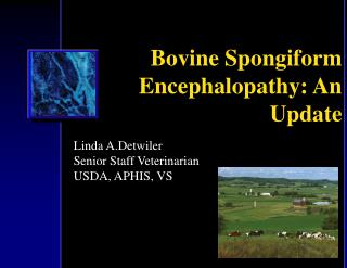 Bovine Spongiform Encephalopathy: An Update