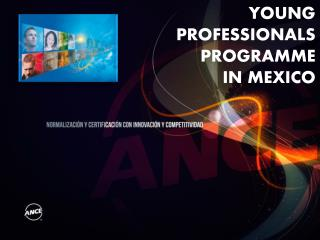 YOUNG PROFESSIONALS PROGRAMME IN MEXICO