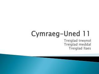 Cymraeg-Uned 11