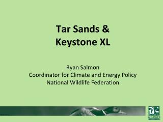 Impacts of tar sands on wildlife, water and communities in Canada.