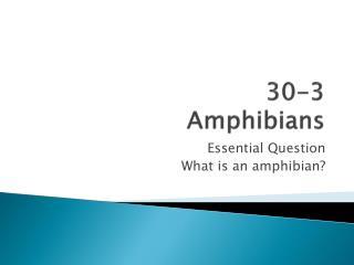 30-3  Amphibians