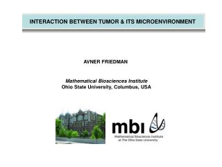 INTERACTION BETWEEN TUMOR  ITS MICROENVIRONMENT