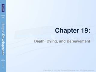 Chapter 19: