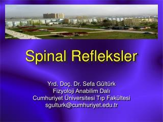 Spinal Refleksler